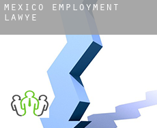 Mexico  employment lawyer