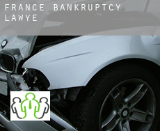 France  bankruptcy lawyer